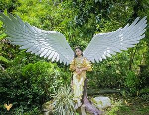 Tạo dáng chụp với đôi cánh thiên thần