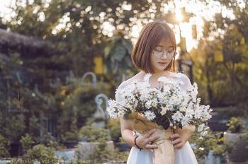 Vân Anh: Vườn cúc trong nắng hoàng hôn