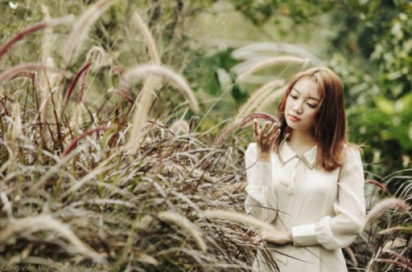 Vatxana bên tuyến cỏ lau hồng