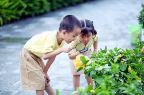 Giá trị cốt lõi và sứ mệnh của Công viên thực vật cảnh Việt Nam