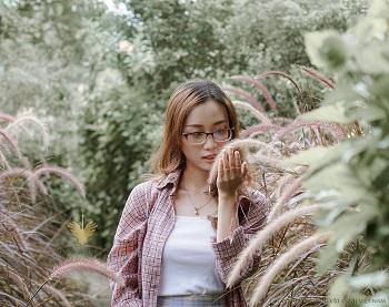 Góc ảnh - Bụi cỏ hồng