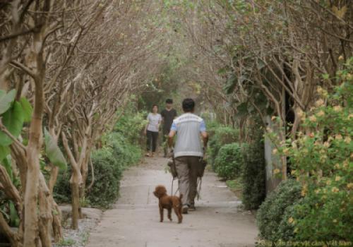 Vì sao chúng tôi hướng Công viên thực vật cảnh VN là một Vườn Địa Đàng (Park Eden)?