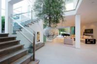 4 gợi ý về cách lựa chọn cây nội thất bóng râm vô cùng đẹp mắt và độc đáo