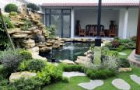 Ý nghĩa sự kết hợp giữa đá và cây xanh trong nghệ thuật vườn cảnh