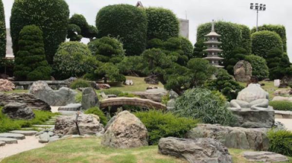 Thủ pháp phối hợp cây và đá cảnh trong vườn nghệ thuật đô thị