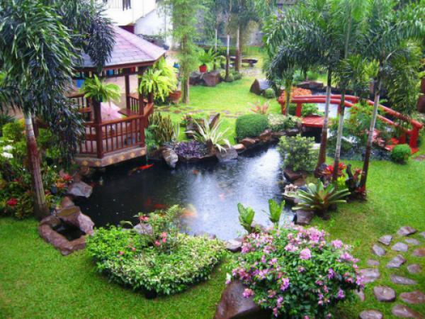 7 Lưu ý cách chọn dùng cây xanh – cây hoa cảnh trang trí cho ngôi nhà sinh thái (P1)