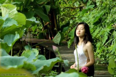 Giới thiệu Công viên thực vật cảnh Việt Nam (Trang trại Hoa - Cây cảnh Thăng Long)