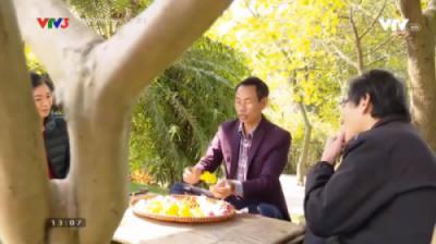 VTV3 - Chương trình Hạnh Phúc Là Gì về vườn Cúc quý của ông Đào Mạnh Hùng