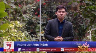 TH Thông Tấn (VNews) - Chương trình Việt Nam Xanh
