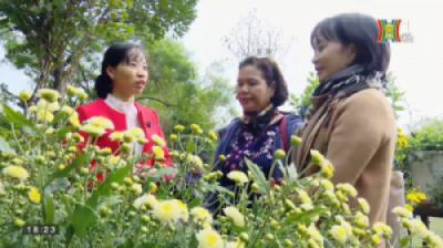TH Hà Nội - Phóng sự thưởng lãm Nghệ thuật