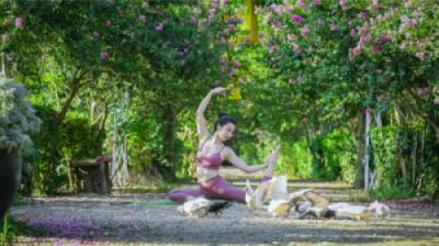 Bài tập Yoga nâng cao giữa thiên nhiên sinh thái