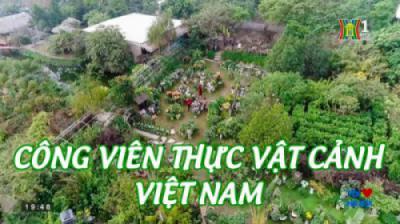 Tôi yêu Hà Nội - CV thực vật cảnh VN